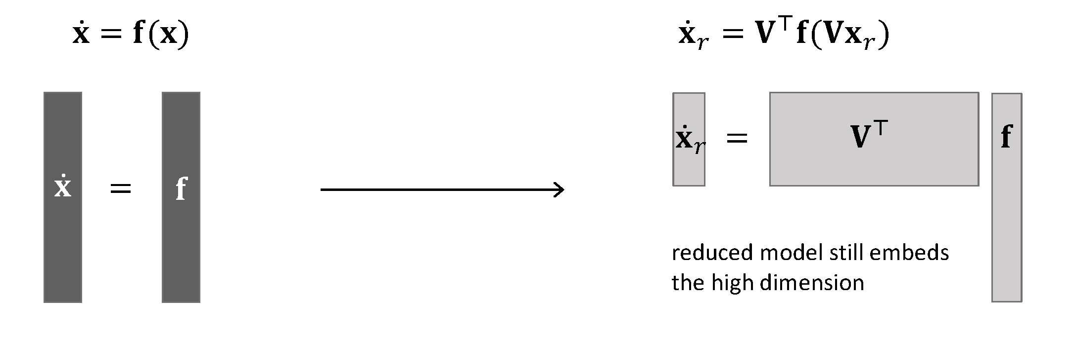 projection of a nonlinear model still embeds the high dimension of the original system